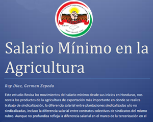 El salario mínimo en los rubros palma africana, banano, melón y caña de azúcar